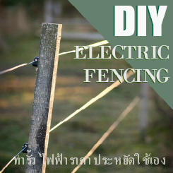 Close up of electric fence in evening light