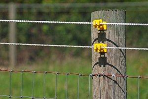 electric-fence 9